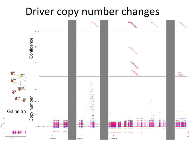 Driver copy number changes