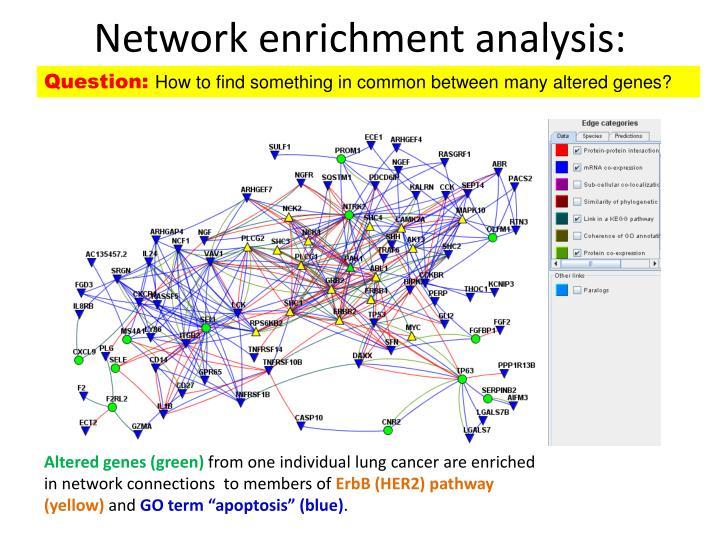 Network enrichment analysis: