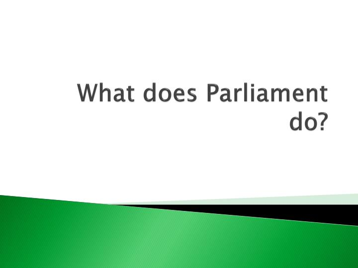 what does parliament do n.