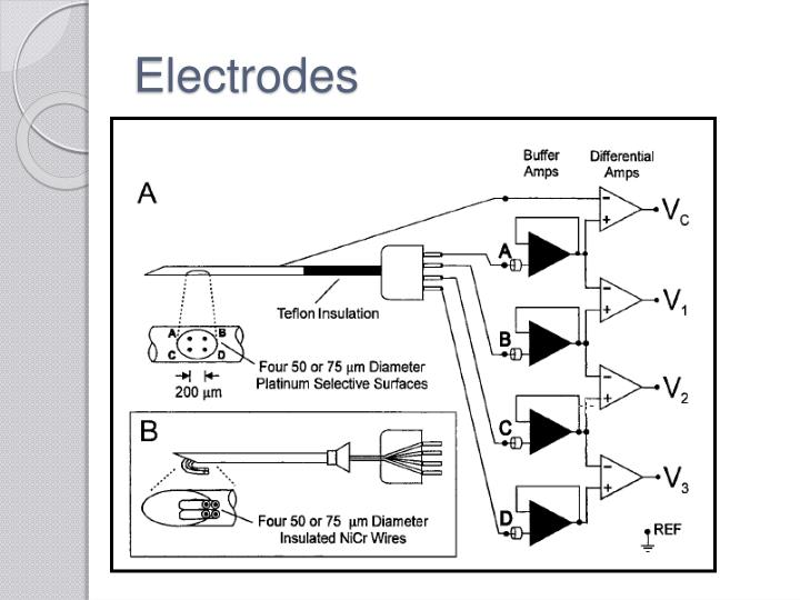 ppt - electromyography  emg  powerpoint presentation