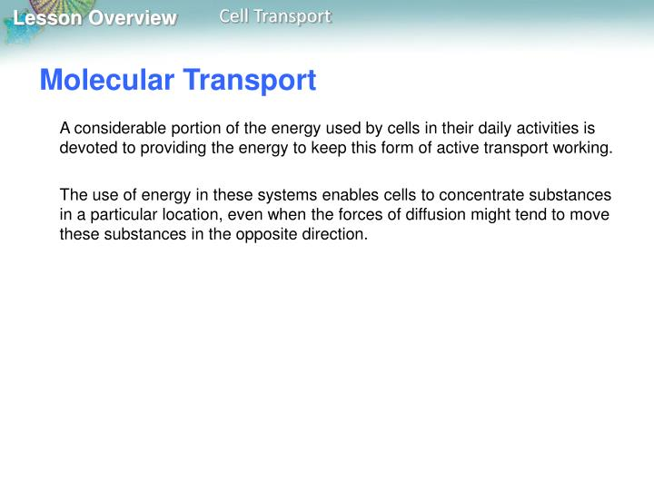 Molecular Transport