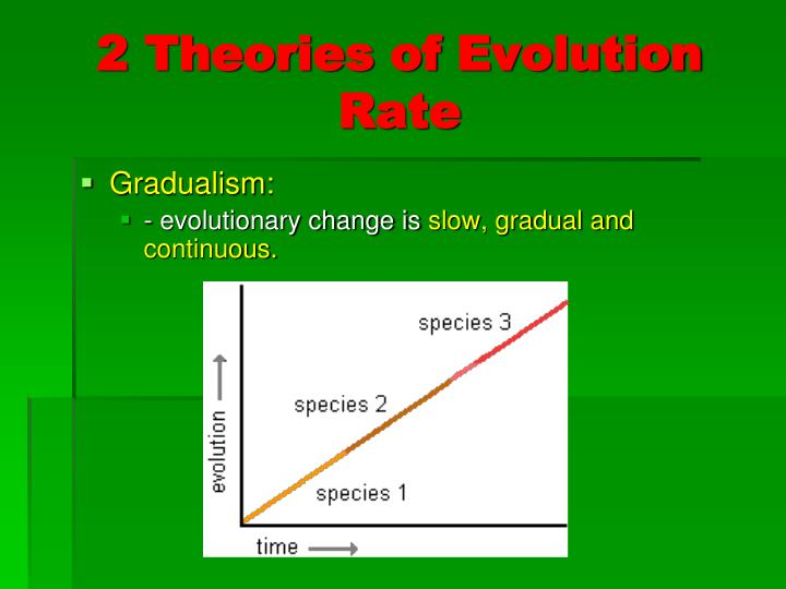 2 Theories Of Evolution Rate