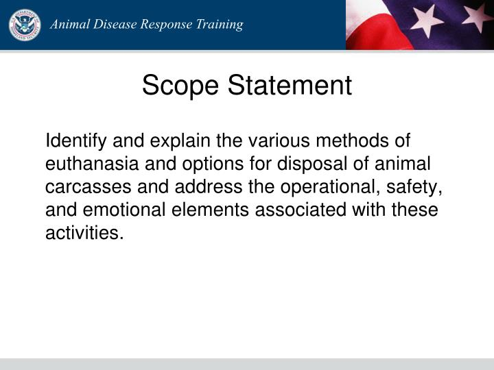 Scope statement