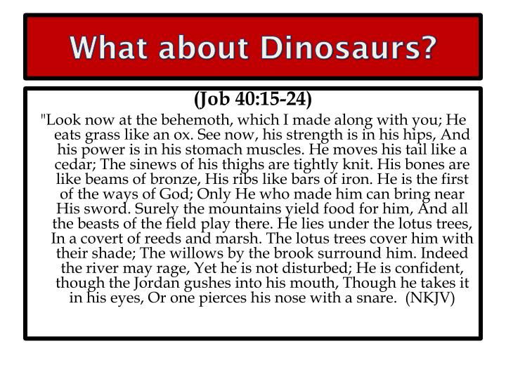 What about Dinosaurs?