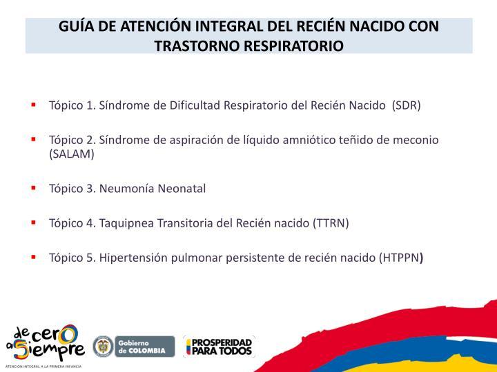 GUÍA DE ATENCIÓN INTEGRAL DEL RECIÉN NACIDO CON TRASTORNO RESPIRATORIO
