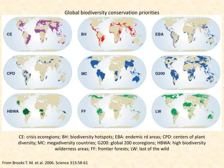 Global biodiversity conservation priorities