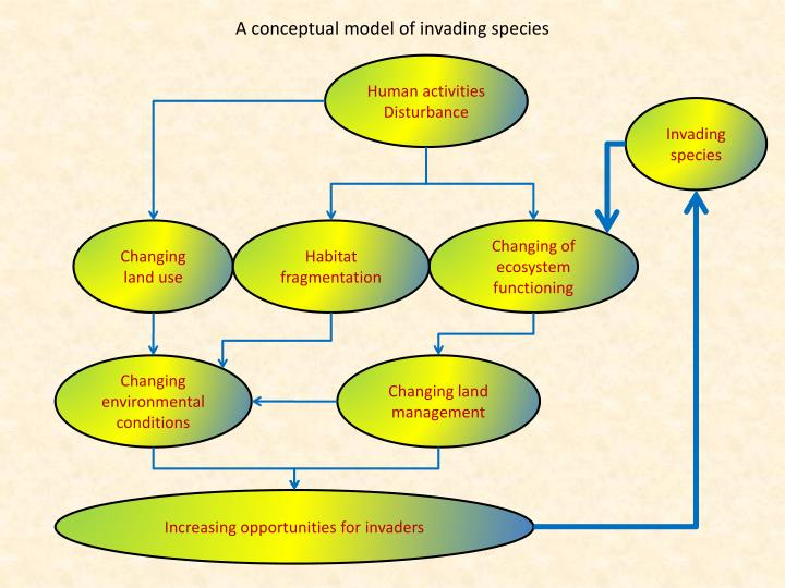 A conceptual model of invading species