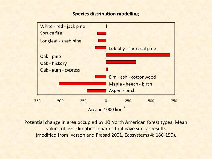 White - red - jack pine