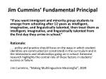 jim cummins fundamental principal