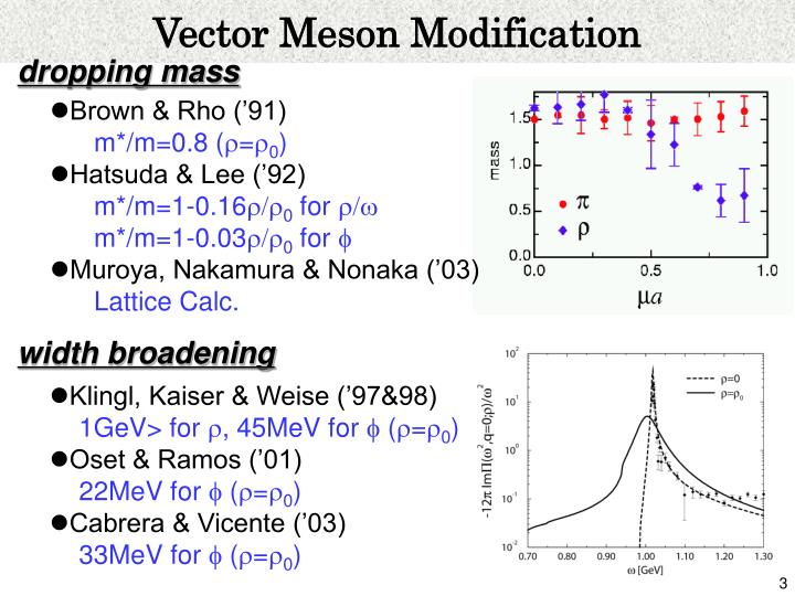 Vector Meson Modification