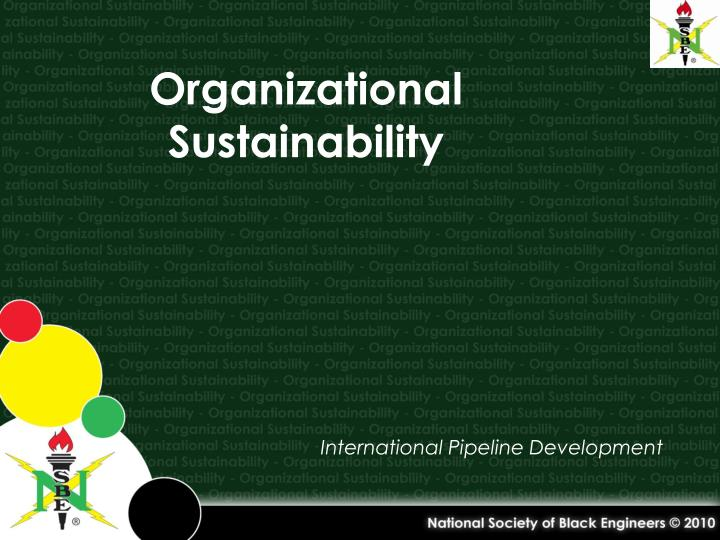 organizational sustainability n.