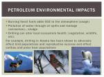 petroleum environmental impacts
