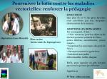 poursuivre la lutte contre les maladies vectorielles renforcer la p dagogie