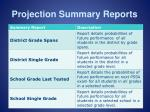 projection summary reports1