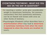 eyewitness testimony what did you see on the day in question