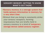 sensory memory getting to know what s out there