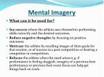 mental imagery1