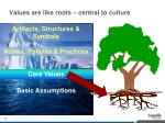values are like roots central to culture