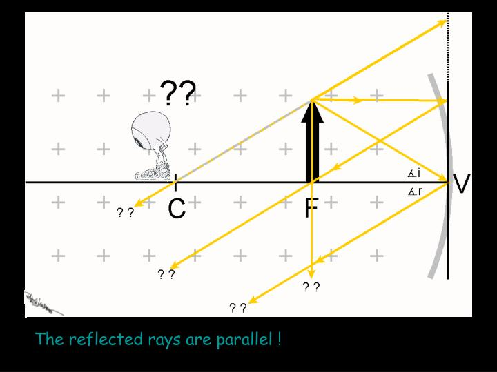 The reflected rays are parallel !