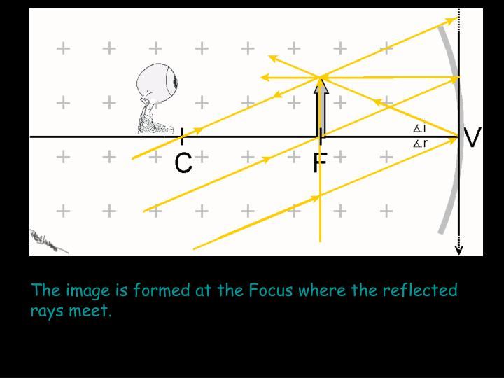 The image is formed at the Focus where the reflected rays meet.