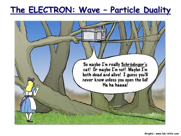 the electron wave particle duality n.