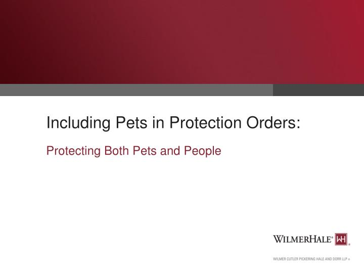 including pets in protection orders n.