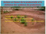 actions en faveur de la productivit et la r silience des syst mes de productions2