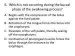 6 which is not occurring during the buccal phase of the swallowing process