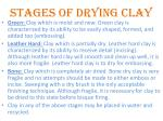 stages of drying clay