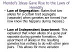 mendel s ideas gave rise to the laws of heredity