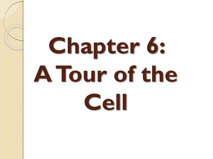 chapter 6 a tour of the cell n.