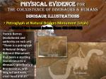 physical evidence for the coexistence of dinosaurs humans dinosaur illustrations