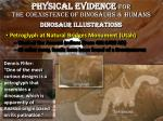 physical evidence for the coexistence of dinosaurs humans dinosaur illustrations1