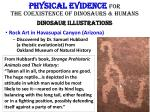 physical evidence for the coexistence of dinosaurs humans dinosaur illustrations4