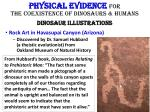 physical evidence for the coexistence of dinosaurs humans dinosaur illustrations5