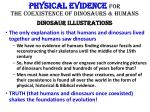 physical evidence for the coexistence of dinosaurs humans dinosaur illustrations6