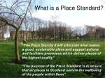 what is a place standard