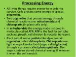 processing energy
