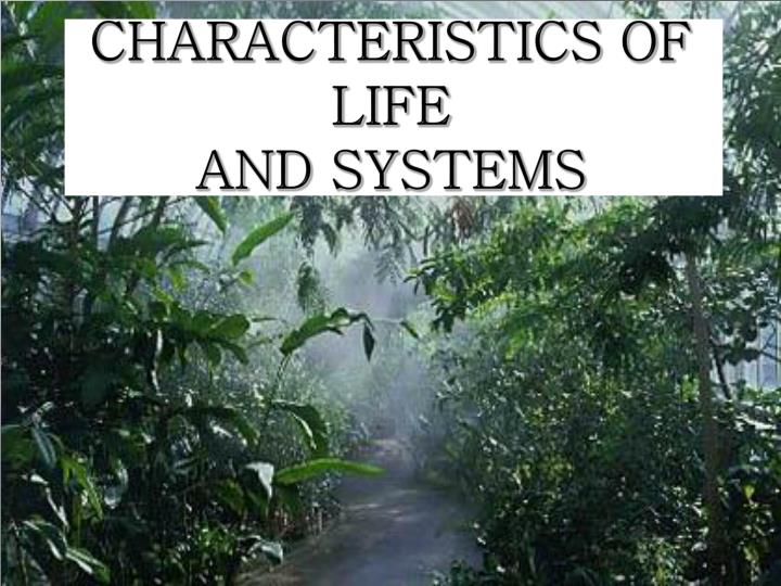 characteristics of life and systems n.