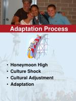 adaptation process