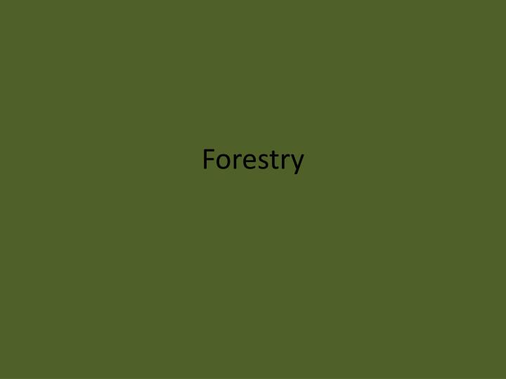 forestry n.