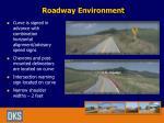 roadway environment1