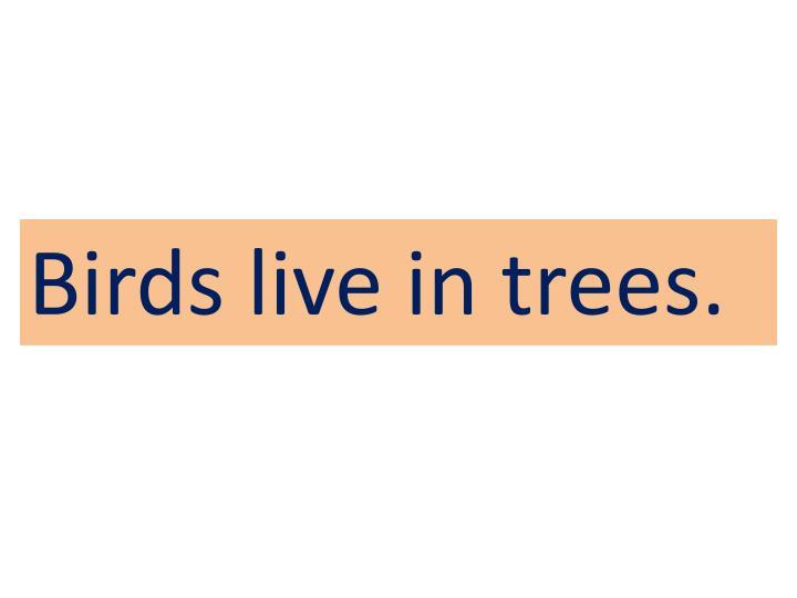 Birds live in trees.