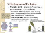 5 mechanisms of evolution1