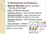 5 mechanisms of evolution4