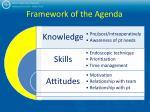 framework of the agenda