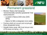 permanent grassland