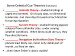 some celestial cue theories handouts