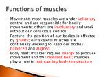 functions of muscles