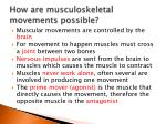 how are musculoskeletal movements possible